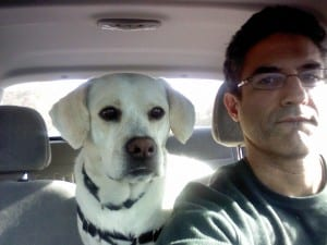 Dog is my copilot.