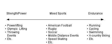The Sports Continuum