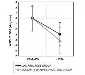 Low carb vs low fat diet essay